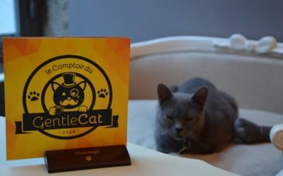 Le Comptoir du GentleCat